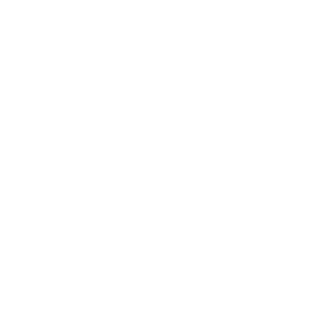 Logo Roca Wood